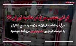 فیلم/ گرانی عجیب مرغ در تهران