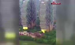 فیلم/ درختان خانه در جزیره هاینان در چین