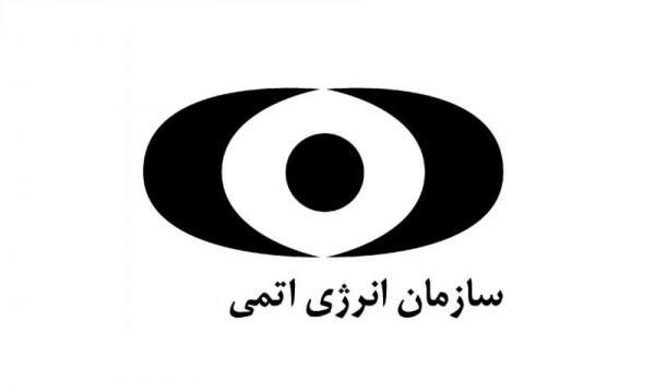 سازمان انرژی اتمی,آشنایی با سازمان انرژی اتمی ایران,وضعیت سازمان انرژی اتمی