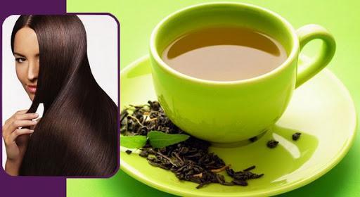 خواص چای سبز برای مردان,خواص چای سبز,خواص چای سبز برای زنان