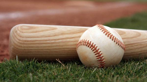 لیست تجهیزات بیسبال,بیسبال,چوب بیسبال