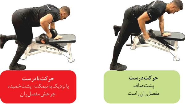 شایعترین اشتباهات در بدنسازی,تمرینات بدنسازی,رعایت نکردن اصول انجام تمرینات بدنسازی,تاثیر تمرینات بدنسازی برای سلامتی,Bodybuilding