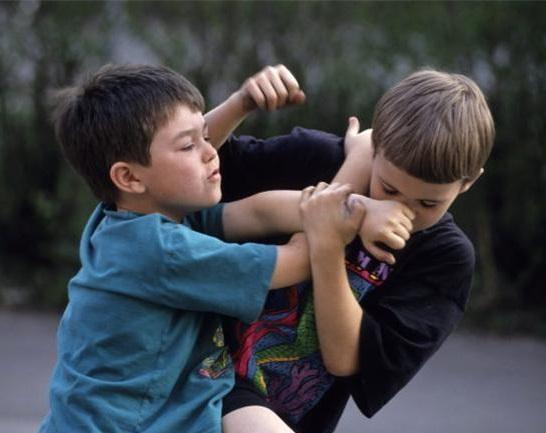 کودکان پرخاشگر,علت پرخاشگری کودکان چیست,در مورد پرخاشگری کودکان