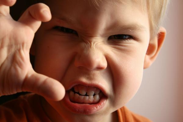 پرخاشگری کودکان,درمان پرخاشگری کودکان,علت پرخاشگری کودکان