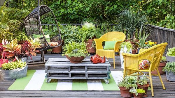 استفاده از گیاهان گلدانی در تزیین باغ,طراحی باغ و ویلا,تزیین باغ