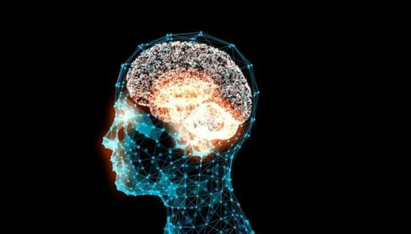 گلوتامات,انتقال دهنده های عصبی مغز,فراوانترین اسید آمینه های بدن