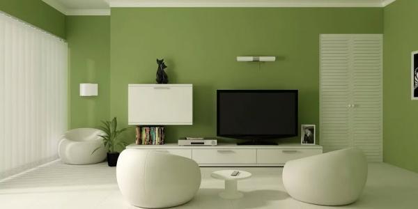 استفاده از رنگ سبز در دکوراسیون آشپزخانه,رنگ سبز در دکوراسیون,استفاده از رنگ سبز در دکوراسیون اتاق نشیمن