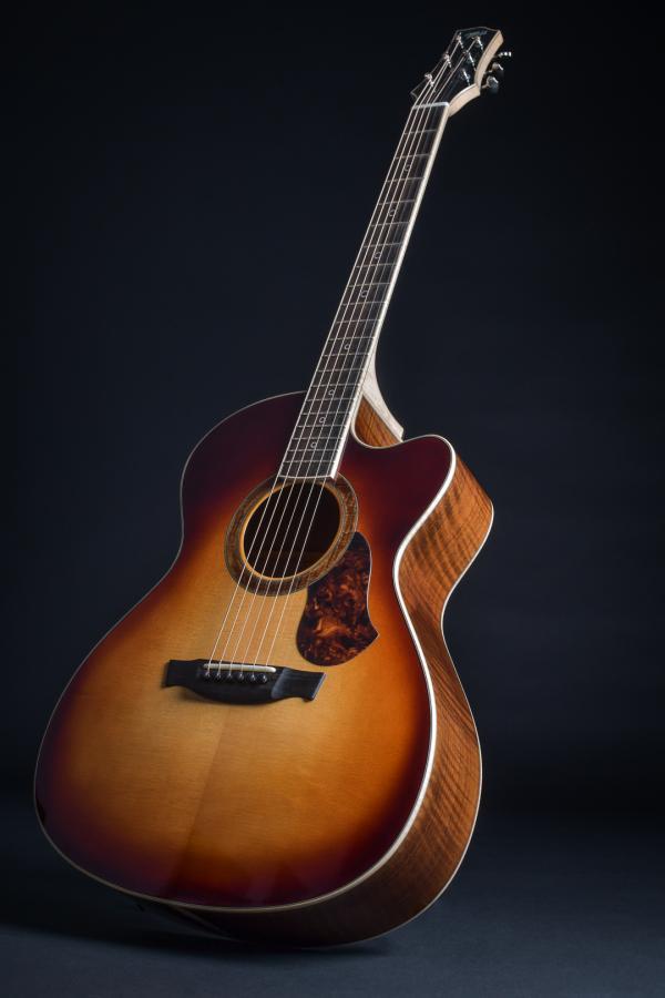 اکورد گیتار,گیتار,کاربرد انواع گیتار