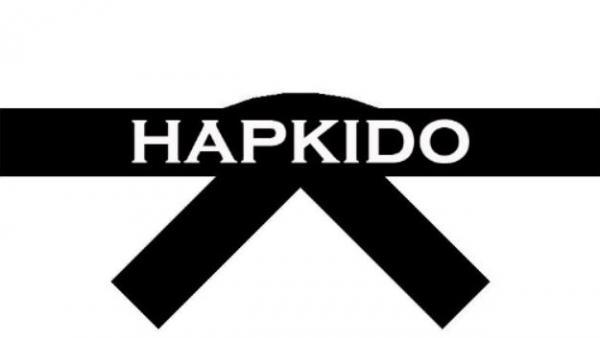 هاپکیدو,ضربات پا هاپکیدو,ورزش هاپکیدو چیست