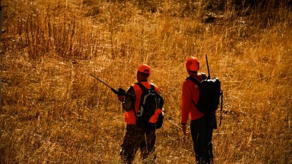 احکام شکار,احکام شکار با اسلحه,آشنایی با احکام شکار