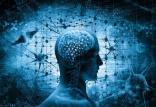 مرگ سلول های مغز,سلامت مغز,پیشگیری از آلزایمر
