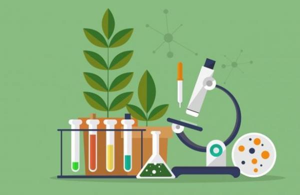 رشته زیست شناسی,بازارکار رشته زیست شناسی,درباره رشته زیست شناسی