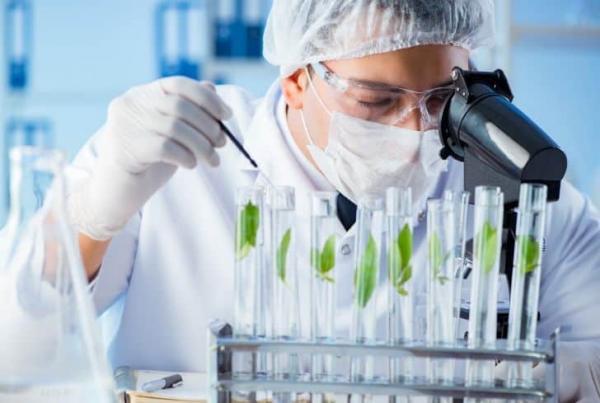 موقعیت کار برای رشته بیوتکنولوژی,رشته بیوتکنولوژی چیست,رشته بیوتکنولوژی