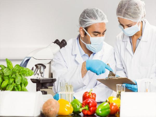 رشته صنایع غذایی,گرایش های رشته صنایع غذایی,بازار کار رشته صنایع غذایی