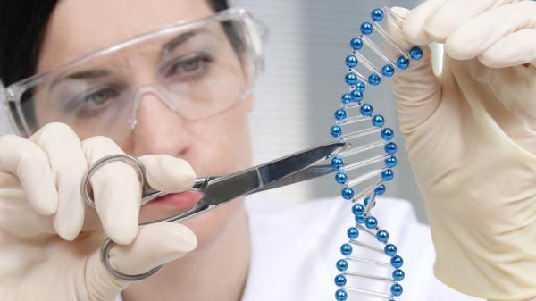 موقعیت شغلی رشته ژنتیک,رشته ژنتیک,آشنایی با رشته ژنتیک