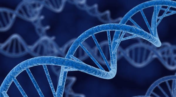 رشته ژنتیک,شغل های مربوط به رشته ژنتیک,بازار کار رشته ژنتیک