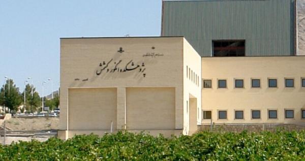دانشکده کشاورزی دانشگاه ملایر,دانشگاه ملایر,دانشکده روان شناسی دانشگاه ملایر