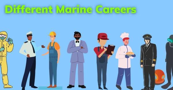 شغل های دریایی,رشته های مشاغل دریایی,انواع مشاغل دریایی
