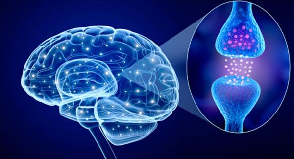 بیماری پارکینسون چیست,پارکینسون,داروهای پارکینسون
