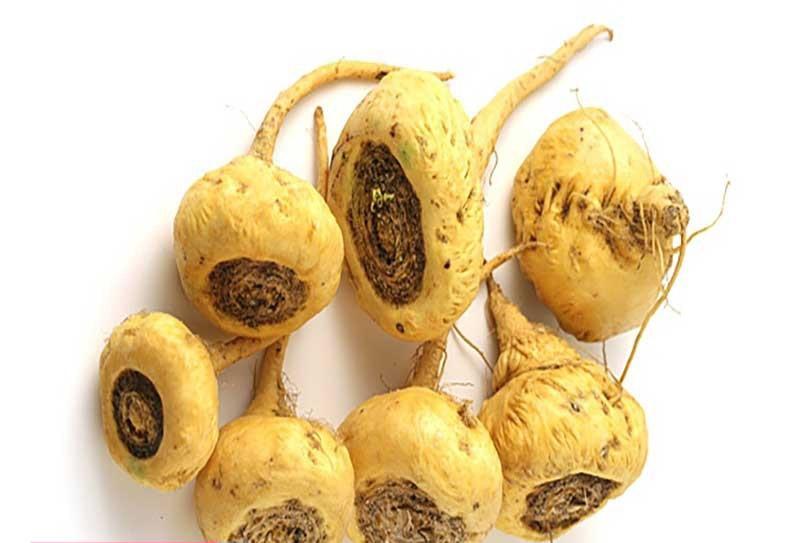 گیاهان اسپرم ساز,قدرت باروری در مردان,خواص میوه خارخسک