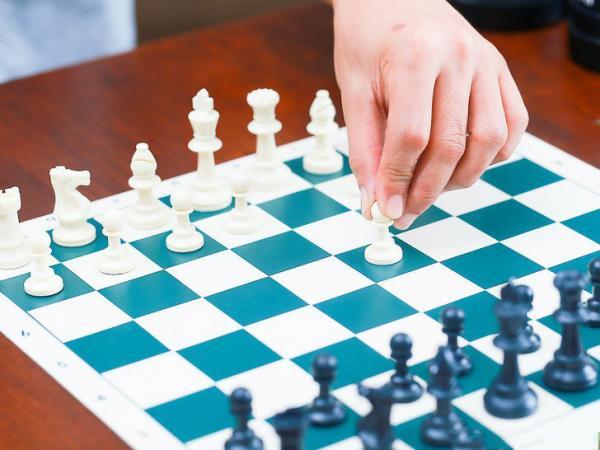 مسابقه شطرنج,شطرنج دو نفره,شطرنج