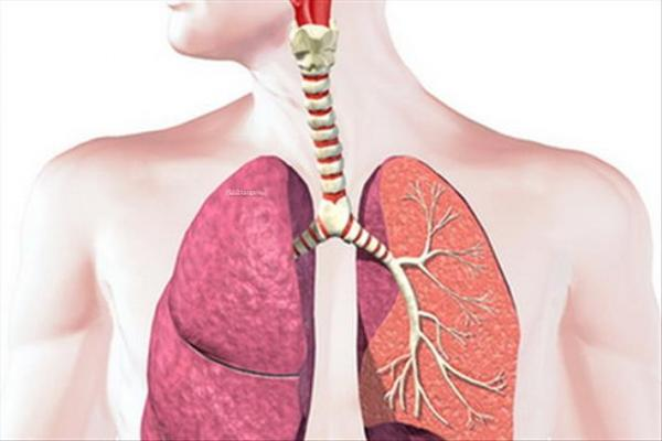 بیماری های تنفسی,نشانه های پنومونی,علائم پنومونی