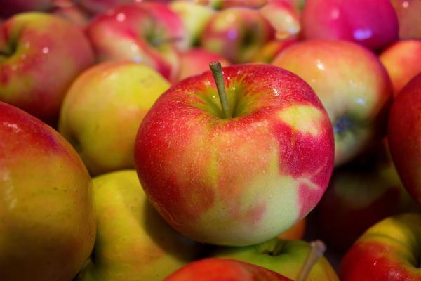 خواص سیب سبز,خواص سیب,خواص سیب برای پوست صورت