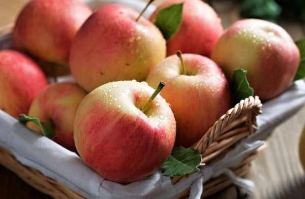 خواص سیب,خواص سیب برای زن باردار,خواص سیب درختی