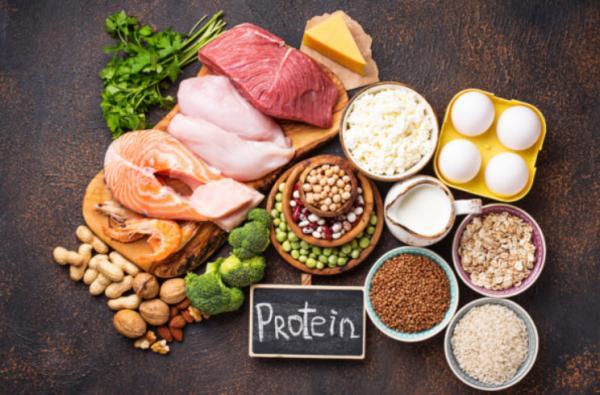 رژیم پروتئین لاغری برای یک روز,رژیم پروتئین,غذاهای سرشار از پروتئین