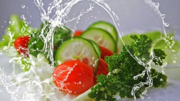 رژیم اتکینز,برنامه غذایی رژیم اتکینز,رژیم اتکینز چیست