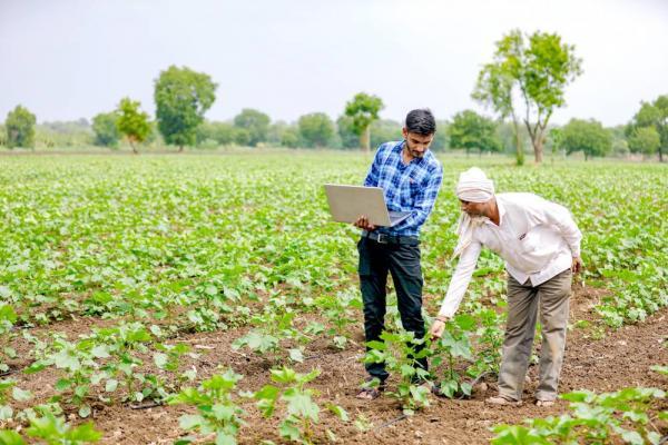 مشاغل روستایی,تولید ادویه جات از مشاغل روستایی,لیست مشاغل روستایی