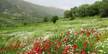 کردستان,جاهای دیدنی کردستان,طبیعت کردستان