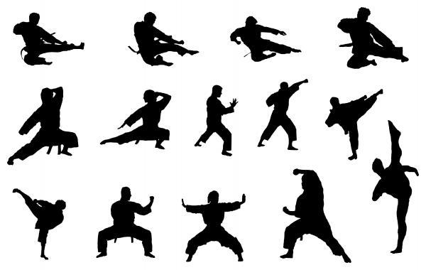 فدراسیون کاراته,کاراته,کاراته سبک شیتوریو