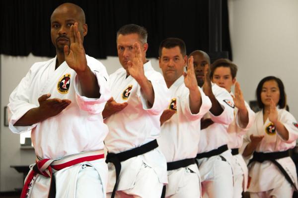 سبک کاراته,کاراته گوجوریو,کاراته