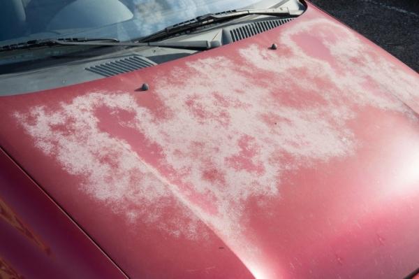 محافظ رنگ خودرو,آفتاب سوختگی رنگ خودرو,دلایل آفتاب سوختگی رنگ خودرو