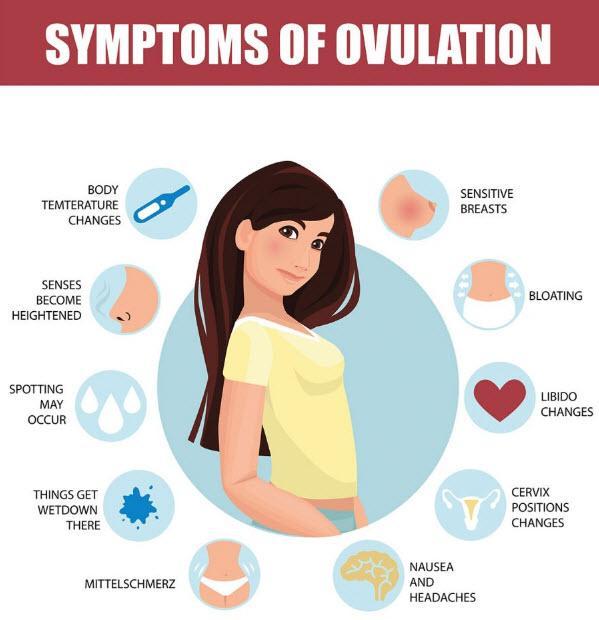 علائم تخمک گذاری,تغییرات دمای پایۀ بدن از علائم تخمک گذاری,ترشحات و لکه بینی از علائم تخمک گذاری