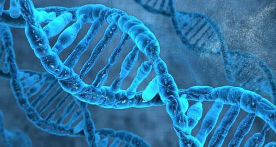 فناوری تغییر ژن,فناوری کریسپر,کاربردهای فناوری تغییر ژن,تاریخچه کشف کریسپر,آناتومی کریسپر