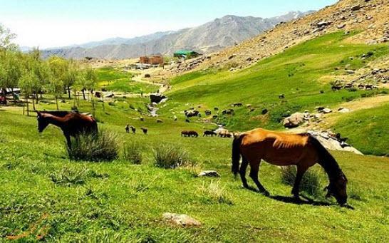 آرامگاه بو علی سینا همدان,زیباترین جاهای دیدنی همدان,جاهای دیدنی همدان