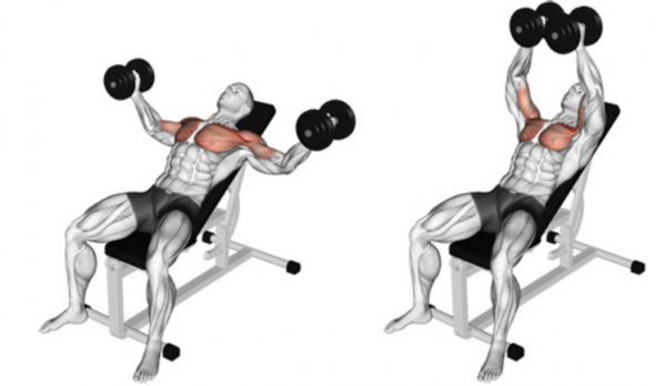 انواع روش درمان گردن درد با ورزش,درمان گردن درد با ورزش,تصاویر درمان گردن درد با ورزش