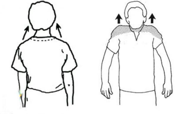 درمان آرتروز گردن با فیزیوتراپی,ورزش برای آرتروز گردن,ورزش مجاز آرتروز گردن