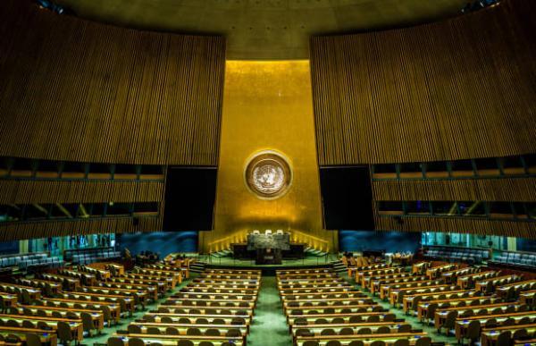 آرم سازمان ملل متحد,سازمان ملل متحد,همکاری با سازمان ملل متحد