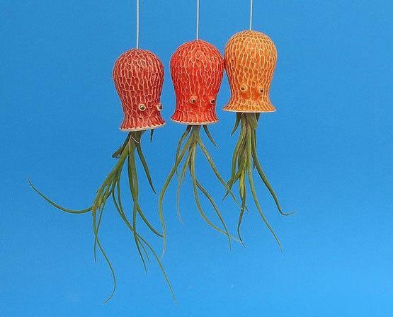 طراحی گلدان,ایده برای گلدان,گیاهان هوازی