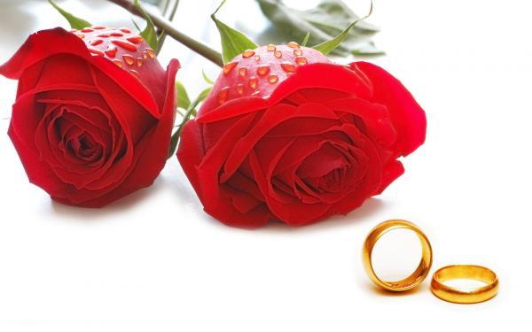 مراقبت های بهداشتی در شب زفاف,شب زفاف,نکات مهم شب زفاف