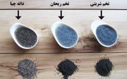 فواید سلامت دانه های ریحان,تفاوت دانه های چیا با دانه های ریحان,ویژگی های دانه های چیا