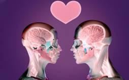 اثرات عشق روی مغز,مطالب روانشناسی,تاثیرات اکسیتوسین بر بدن