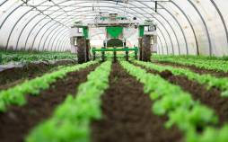 رشته کشاورزی,رشته کشاورزی چیست,دروس رشته کشاورزی