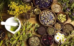 رشته طب سنتی,گرفتن مدرک طب سنتی,گرایش های رشته طب سنتی