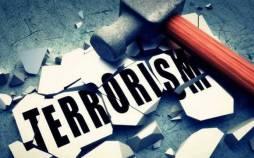 تروریسم,تروریسم سازمانی,تروریسم دولتی