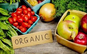 محصولات ارگانیک,ارگانیک,پرورش محصولات ارگانیک